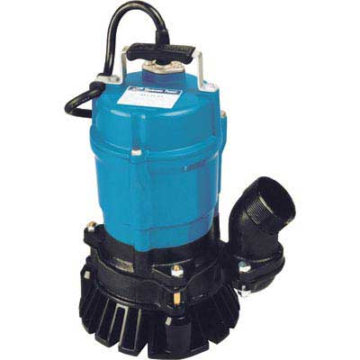 "2"" Electric Submersible Pump Image"